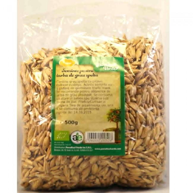 Seminte iarba de grau spelta ecologic