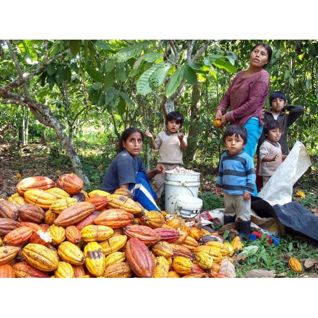 Boabe de cacao crude Criollo, comertul echitabil Peru, 250g